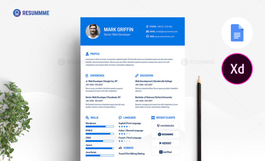 web developer resume template